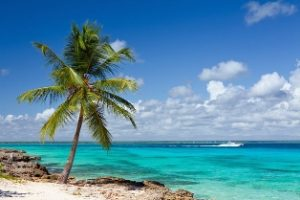 фото он-лайн поиск туров Доминикана